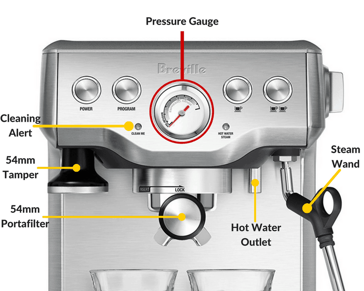 detailed information about the breville infuser
