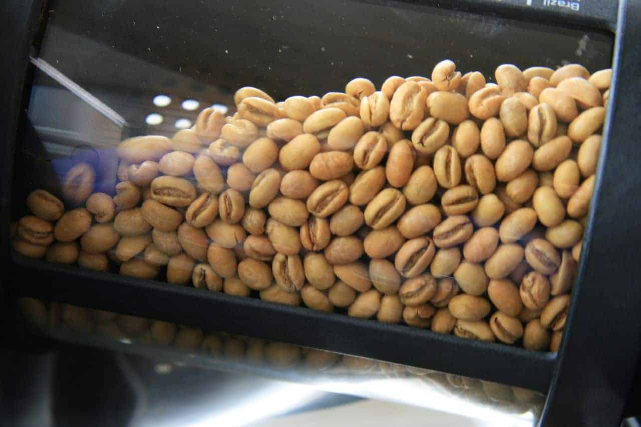 peaberry beans ready to roast