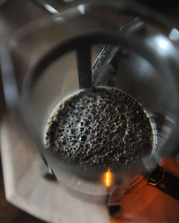 coffee bloom in french press