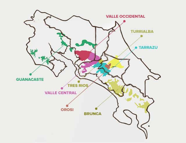 Costa Rica's Coffee Growing Regions