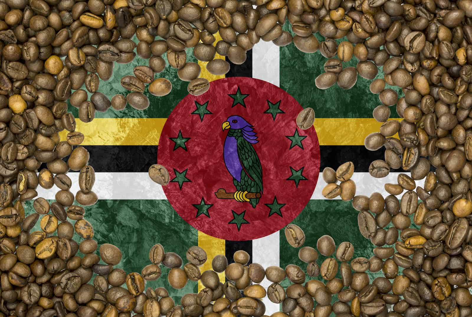 Flag of Dominican Republic under a roasted coffee beans background texture