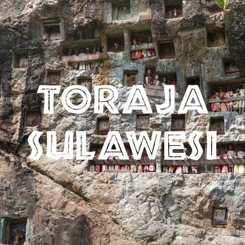 Toraja Sulawesi coffee