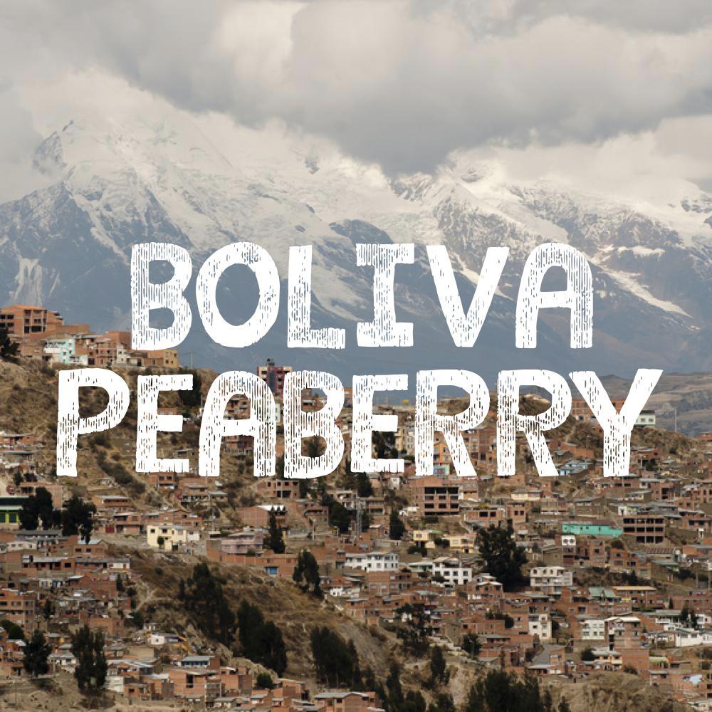 Volcanica Bolivia Peaberry